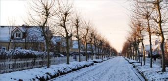 Eindruck aus dem Ferienpark im Winter 2012